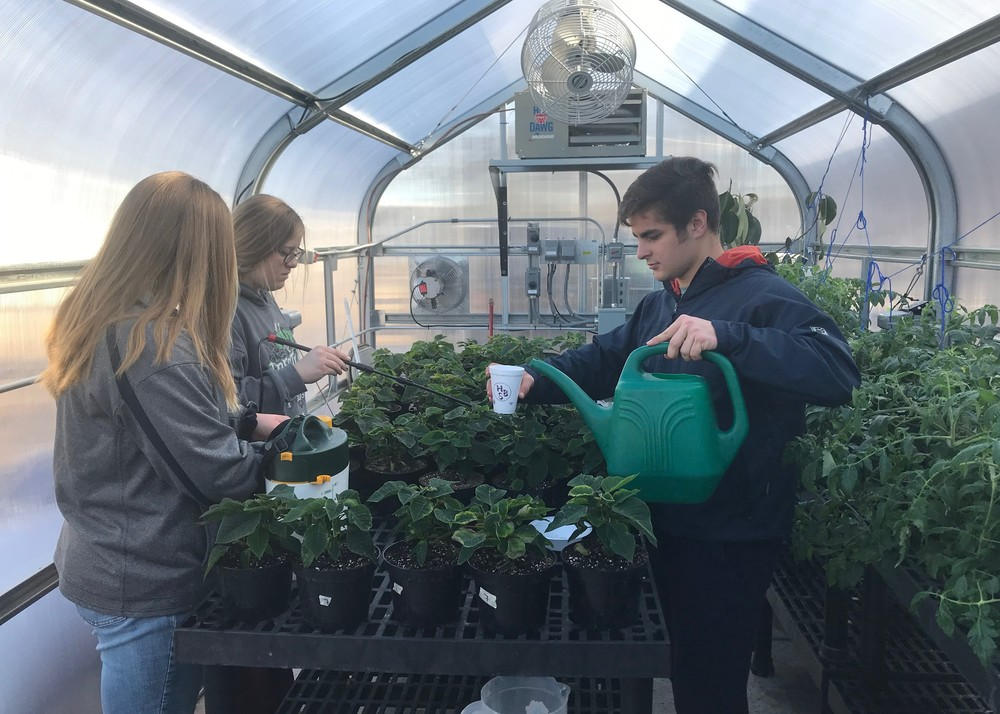 School's Greenhouse Helps Students to Grow