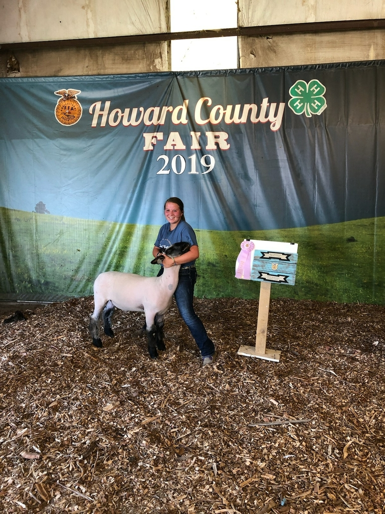Reserve Champion Overall Market Wether